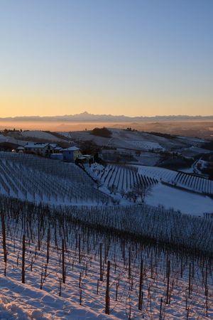 Langhe Hills And Valleys Travel Destinations Hills Top Of The Hills Snow Snowed Snowed Hills Snowy Landscape Snowed Landscape Snowy Sunset Winter Winter Sunset Frozen Landscape  Sunset Beauty In Nature Sky Agriculture Nature Landscape Tranquility Scenics Outdoors No People Rural Scene