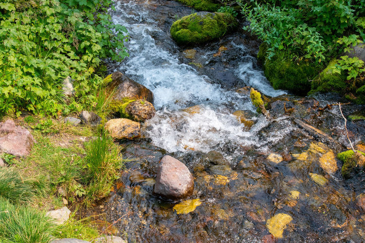High angle view of stream flowing through rocks in forest