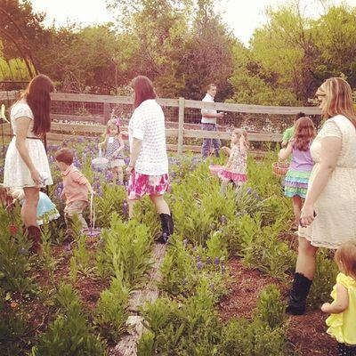 Easter Egg hunt in the garden for the kids Cooney2014