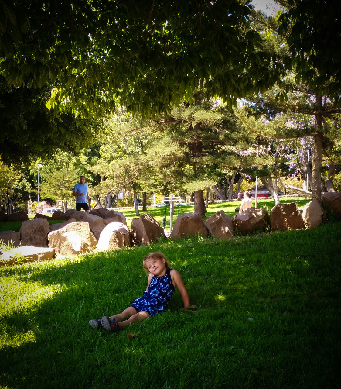 grass, animal themes, real people, tree, sitting, day, outdoors, one person, field, childhood, full length, livestock, domestic animals, mammal, nature, large group of animals, sheep, blond hair, young adult, people