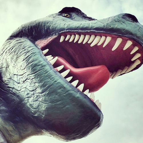 My bro Hanging Out Check This Out Dinosaur Norway Chilling Photooftheday Picoftheday Picture Photography LOL Fun Hi!