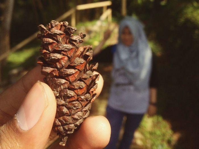 Handphonephotograhy Indonesianwomen Indonesia Hijabers