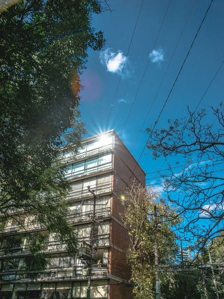 Architecture Architecture_collection Building Building Exterior Cdmx City City Life Cityscape Compisition Composition Condesa Lifestyle Lifestyle Photography Love Mexico City Minimalism Neighber Outdoor Photography Outdoors Polanco, CDMX Roma Street Street Photography Textures Tree