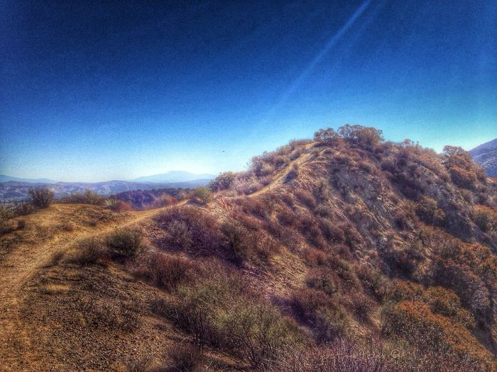 Up in some hills in SoCal ... it was a bright beautiful morning ✨ EyeEm Nature Lover America's West Series Hdr_Collection