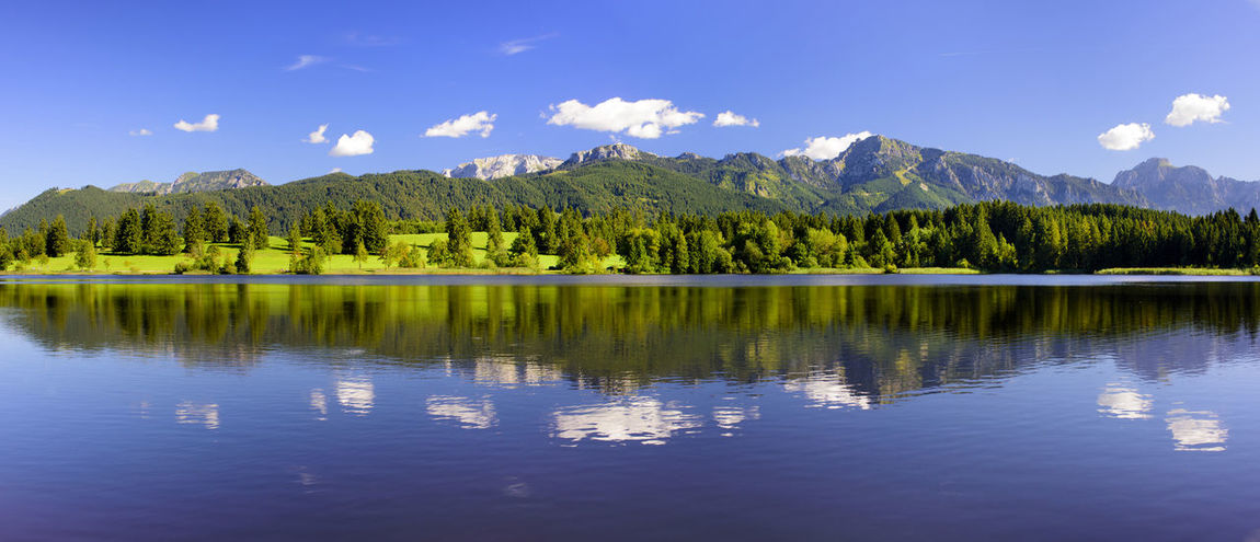 perfect and symmetrical reflection of the mountains in lake Forggensee in region Allgäu, Bavaria, nearby city Füssen Allgäu Bavaria Bavarian Landscape Mirror Nature Panorama Panoramic Reflection Rural View Water Reflections Bavarian Beauty In Nature Forggensee Germany Lake Landscape Mirroring In Water Mountain Mountain Range Scenics Symmetrical Symmetry Water Wide Angle