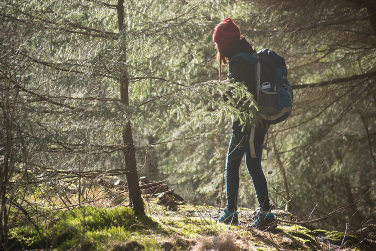 Woman Walking In Norwegian Forest