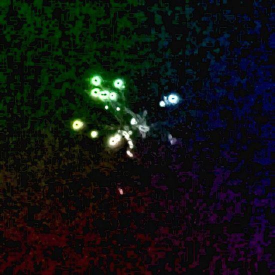 Nigth Ligths Nigthlight Firework Fireworks Nigth  Feuerwerk