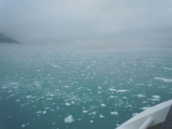 Alaska Cruise Crystal Cruises Floating Ice Glacier Iceberg Iceberg Dead Ahead Icebergs Travel Water