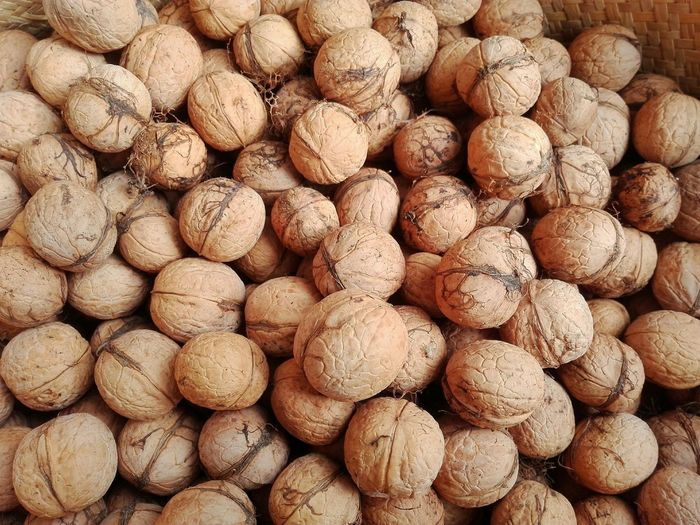 Basket Of Walnuts Walnuts Full Frame Abundance Food And Drink Food Autumn Close-up Nature Walnuts Ecologic Walnuts Collection Of Walnuts Outdoors Beauty In Nature