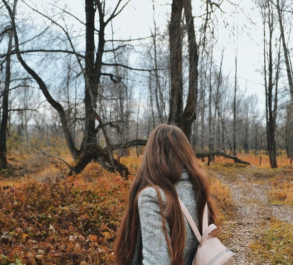 Rear View Of Woman Standing Against Bare Trees In Forest