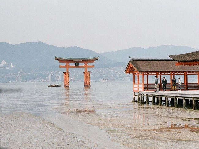 旅のおもいで。 Film Photography 120 Film Filmcamera PENTAX67 広島 宮島 Pro400H