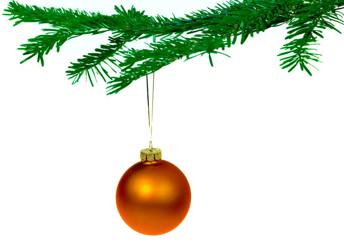 Close-up of christmas decorations hanging on tree over white background