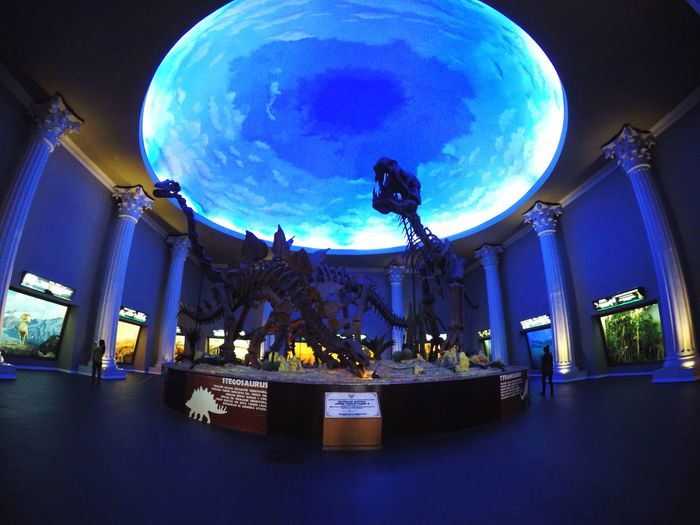 Night At The Museum Art And Craft Multi Colored Illuminated Built Structure Architecture Sculpture Travel Destinations No People City Sky Night Statue Outdoors Globe Astronomy