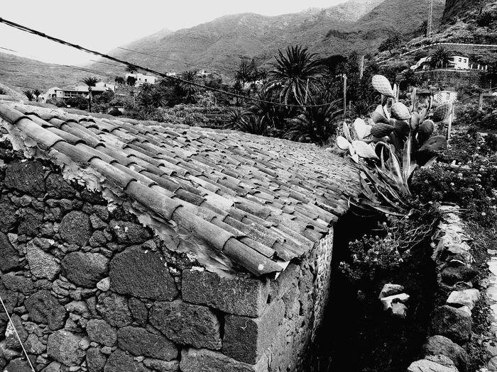 Noir Blackandwhite Black And White Taking Photos Monochrome Bw Tenerife Mono Bnw Photography Noiretblanc Blancoynegro Bw_lover Blancinegre Bwstyles_gf Noirlovers Bwoftheday Bwbeauty Tacking Photos Igersbnw Black & White
