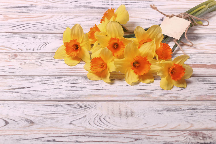 Copy Space Flowering Plant Flower Freshness Fragility Vulnerability  Plant Flower Head Beauty In Nature Inflorescence Petal Yellow Wood - Material Close-up Table Nature No People High Angle View Pollen Flower Arrangement Bouquet Narcissus Daffodils For You Postcard Congratulations Springtime Yellow Flowers