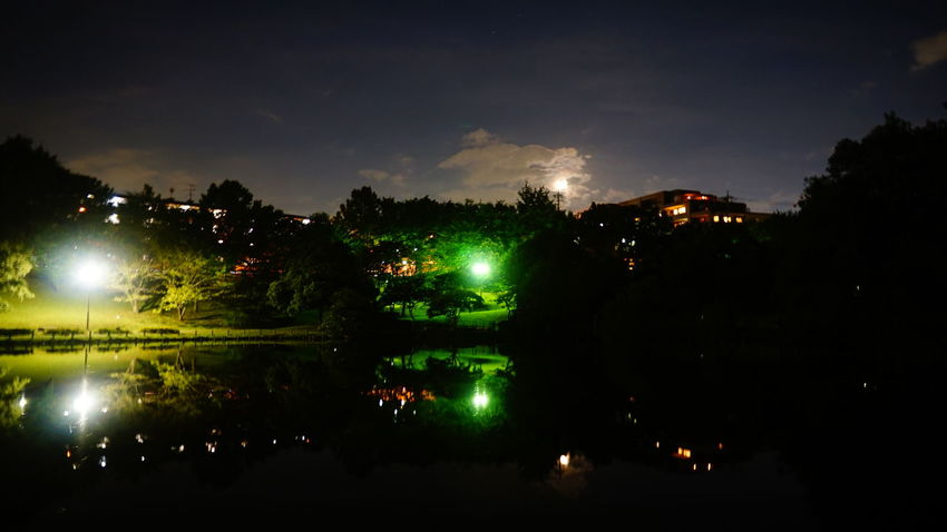 Night Reflection Water Tree Outdoors No People Illuminated Sky 横浜 イマソラ