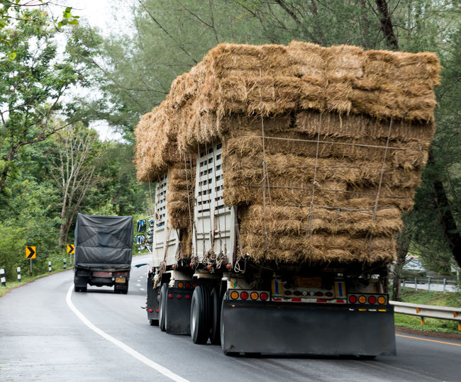 Stack Of Hay In Semi-Truck On Street