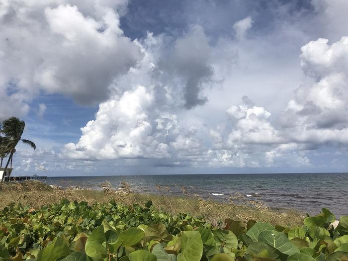 Moody Sky Beach