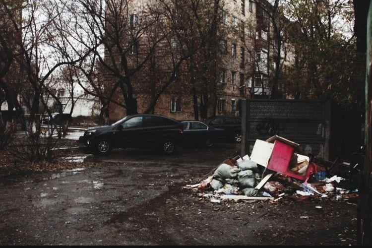 мусор Garbage Tree Motor Vehicle Transportation Car City Mode Of Transportation