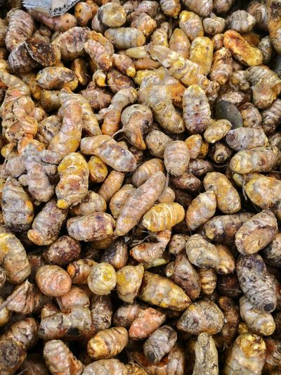 A pile of cumin Cumin Vegetable Healthy Eating Healthy Lifestyle Healthy Lifestyle Cumin Pebble Beach Beach Backgrounds Full Frame Textured  Close-up Dried Food Dried Fruit Chinese Herbal Medicine