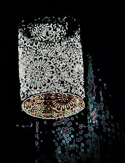 Black Background Close-up Illuminated Lamp Lamp At Night Lamplight Low Angle View No People Solar Lamp Studio Shot