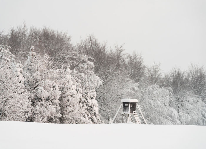 Snowy winter mountain forest scape with a deer stand Plant Tree Cold Temperature Winter Nature No People Snow Land Tranquility Day Architecture Tranquil Scene Field Built Structure Sky Beauty In Nature Outdoors Growth Non-urban Scene Snowing