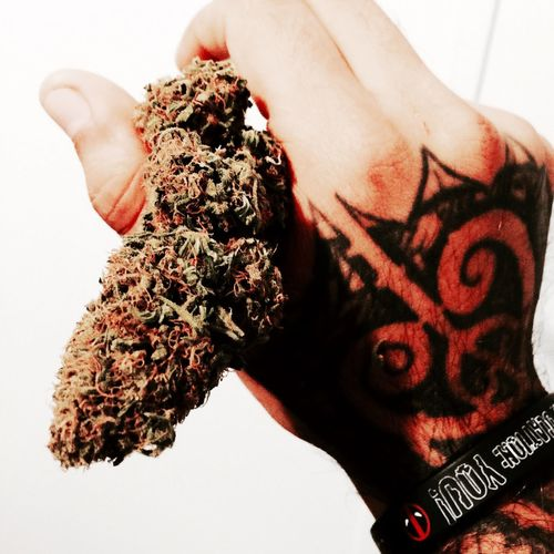 Nugget🍁 Iphone 6 Plus IPhoneography IPhone Iphonephotography Iphone6plus Iphone6plusphotos Hello World Relaxing Hanging Out Marijuana Rap&hiphop Marijuanaphotosubmission Music Is My Life Music Deadpool Marvel Comics Taking Photos Selfmade 100 Tattooed Tatted Up Tattedup Tattoo Tattoos Inked