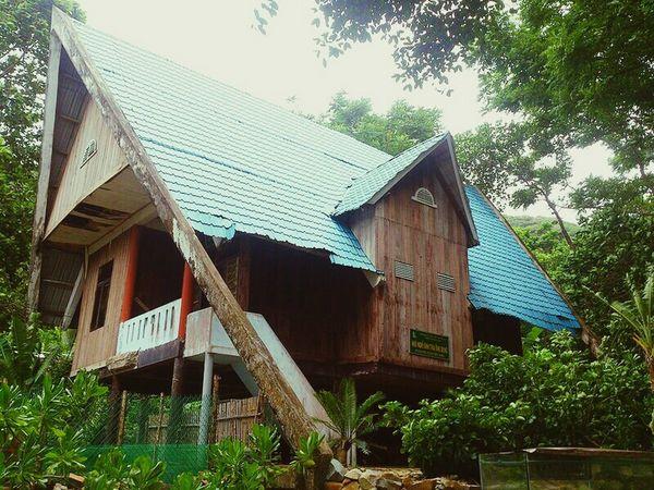 Vietnam Taking Photos On The Road Hello World Landscape Viet Nam Exploring New Ground Côn Đảo Home Sweet Home
