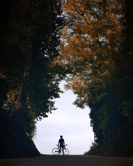 Man with bicycle standing amidst trees