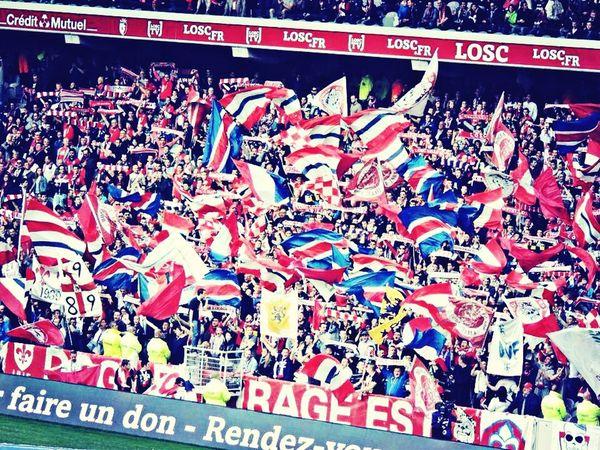 LOSC! (Losc photographie) LOSC Lille Soccer Flag