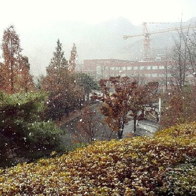 First snow falls here