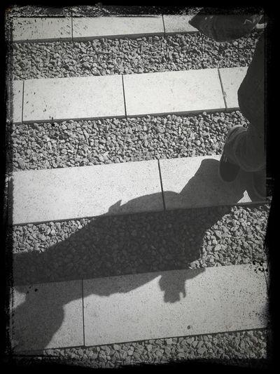 Silhouette Urban Geometry Black & White Shadow