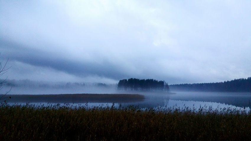 Hello World Raindrops Rainy Days Rain Foggy Day Latviabestcountry Latvia Fog Photography Madebyme