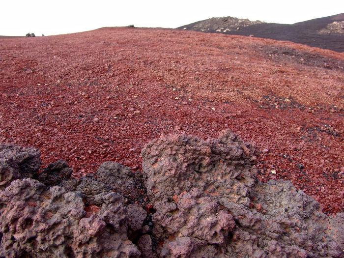 The incredible coloring of Askja's ground. Field Iceland Red Rock Rock Formation Traveling Color Colorful Ground Iceland Trip Landscape Lava Lava Field Lava Rocks Lava Stones Magma Magmatic Dikes Mountain Orange Color Palette Red Rocks  Rocks Stones Vulcano Wallpaper