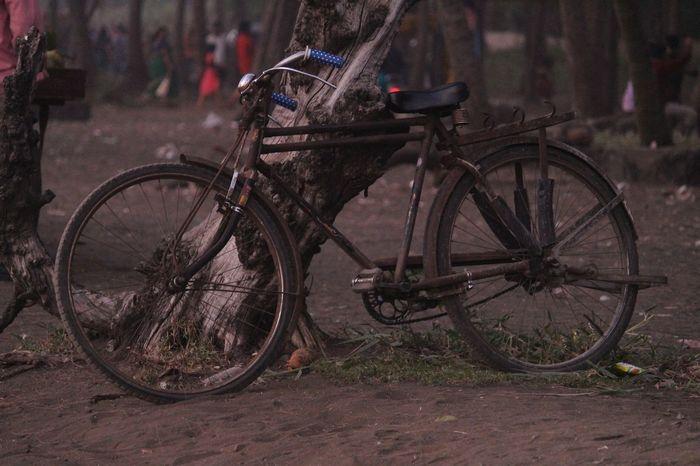 Bicycle Outdoors Nature Sunset Naturallighting Nofilternoedit 700dphotography Oldlook Virar