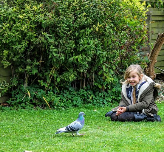 My Favorite Photo Granddaughter Loving Nature Pure Excitement Excitement Bird Photography Pigeon