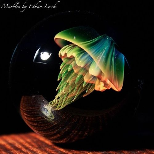 Jellyfishmadness!! Jellyfish Jellyfishmarble Glass Glasslove love boro boromarble gtt marble ventura 805 ethanlesch