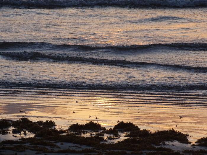Sunset Tobago