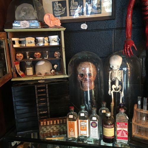 Oddities shop Oddities Curiosities Medical MedicalEquipment Vintage Skulls Skeleton Specimen Morbid Macabre Odditiesstore Goth Dark Darkaesthetic Fetus Dental Market