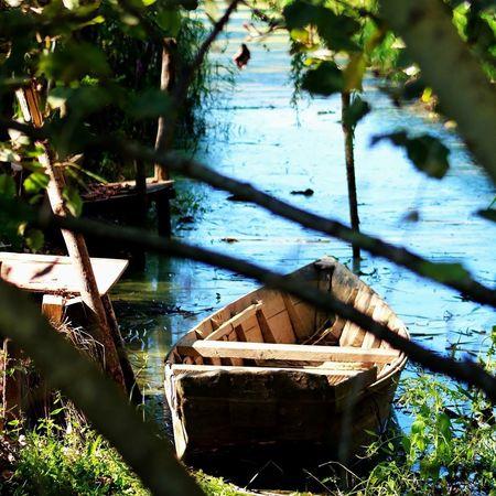 Tuscany Tuscany Countryside Toscana Nature Campagna Padule Di Fucecchio