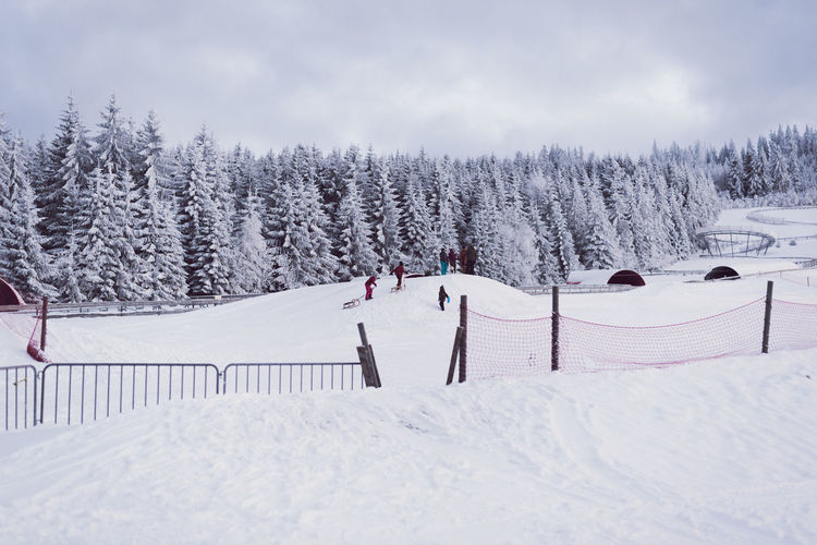Childhood memories Beautiful Beauty In Nature Beauty In Nature Childhood Children Cloud - Sky Cold Temperature Day Frozen Fun Landscape Nature Outdoors People Playing Scenics Ski Sky Sledge Snow Snow Covered Tree Winter Winter Sport Winterwonderland Shades Of Winter
