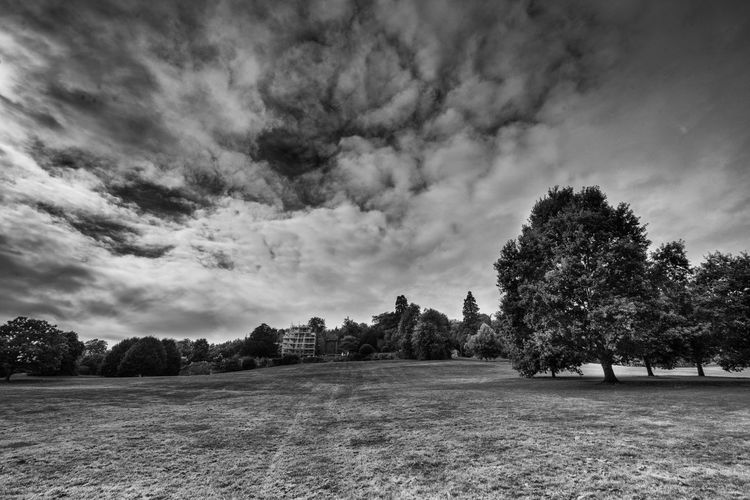 Photograph taken from the grounds of Chartwell House, the home of Winston Churchill, hero, period. Beauty In Nature Chartwell Cloud - Sky Field Grass Growth Landscape Nature No People Outdoors Scenics Sky Tranquility Tree Winston Churchill