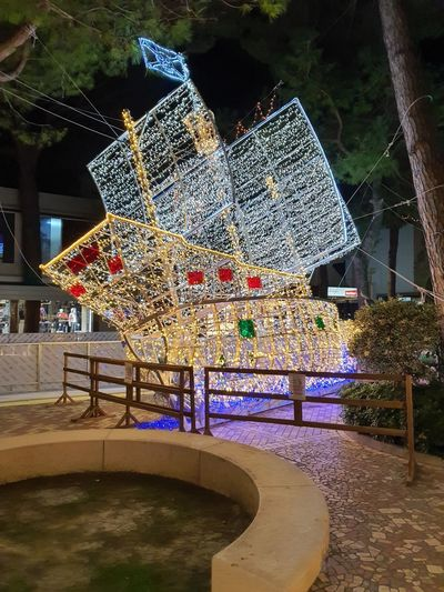 Illuminated decoration hanging from tree by swimming pool