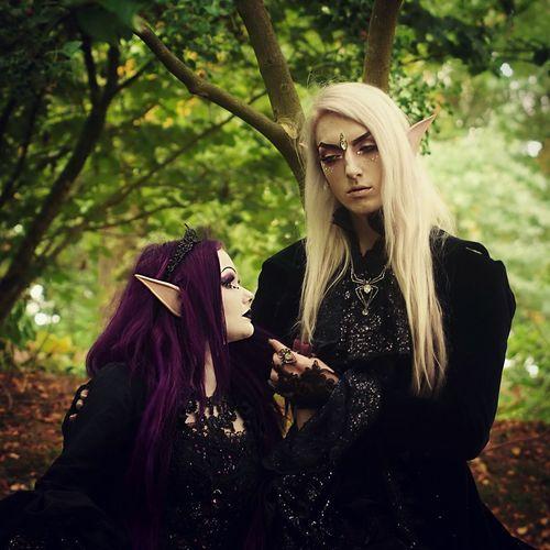 Kingdom of Elfs