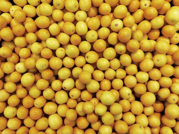 Yellow Abundance Repetition Freshness Vibrant Color Fruit Healthy Eating Food And Drink Food Stack Close-up For Sale Business Conformity In A Row Large Group Of Objects Choice Variation Group Of Objects Extreme Close Up Beautifully Organized