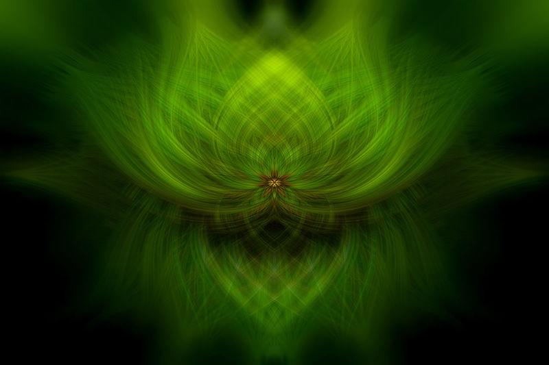 Abstract Pattern Texture Swirl Swirl Effect Photoshop Illustration Light Overlay Backdrop Wallpaper Desktop Flower Nature Organic No People Backgrounds Green Color Close-up Motion Creativity Plant Abstract Backgrounds Blurred Motion Illuminated Outdoors Reflection Concentric Freshness Sky Fantasy Bright