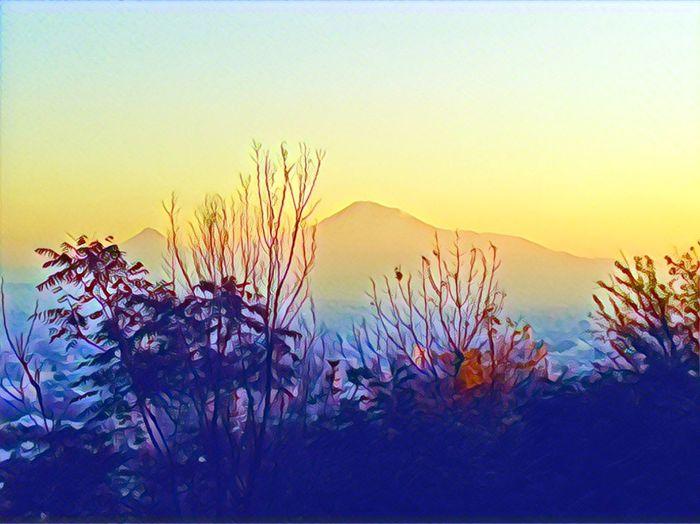 Mountain Sunset Beauty In Nature Sky Tree Ararat Mountain🗻🗻 EyeEmNewHere