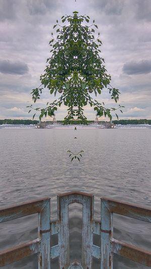 зеркало Cloud - Sky No People Water Nature Architecture Day Sky Beach Tree Москварека Речной_вокзал River речнойпорт речнойвокзал