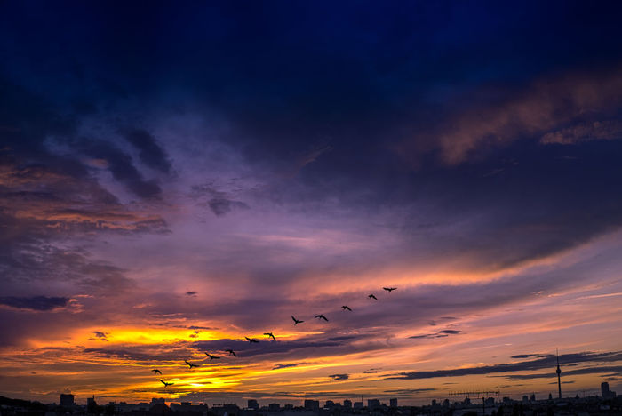 Beauty In Nature Birds City Cityscape Cloud - Sky Clouds Dramatic Sky Germany Nature Nature Outdoors Scenics Silhouette Sky Sky And Clouds Skyporn Sunset Capture Berlin