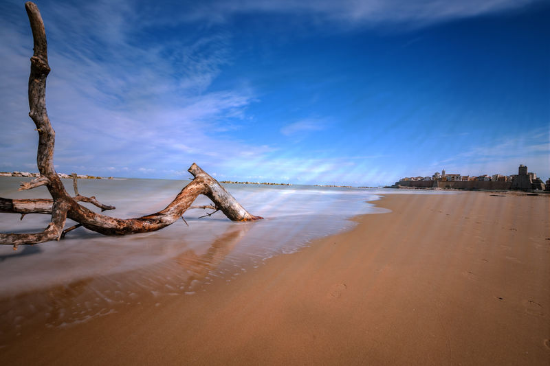 EyeEm Selects Beach Water Sea Sky Blue Landscape Sand Nature Horizon Over Water Beauty In Nature Cloud - Sky Outdoors No People Scenics Day City Landscape_photography Trunck Winter Sea Solitude Beach Side Cityscape Sandy Beach Seaside